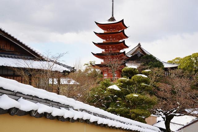 宮島雪 8