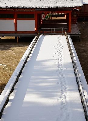 宮島雪 19