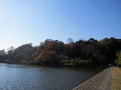 ni.韮山城 001