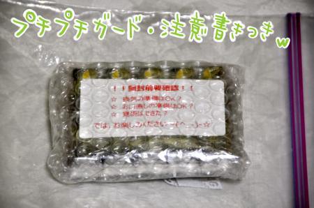 DSC_2812_convert_20131011195442.jpg