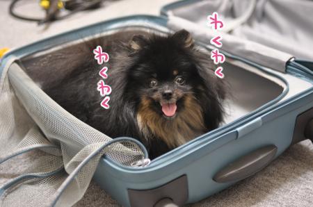 oyatsu_convert_20130815125538.jpg