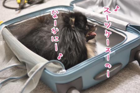 su-tuke-suno_convert_20130815125556.jpg