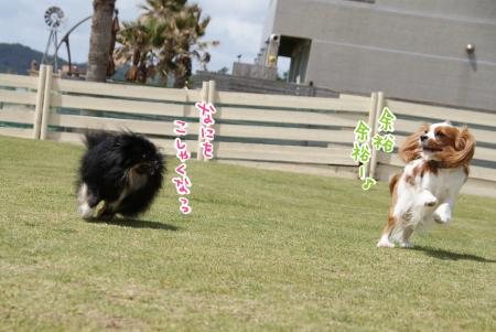 yoyuu_convert_20130508092146.jpg