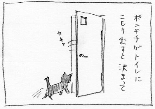 3_カチャ