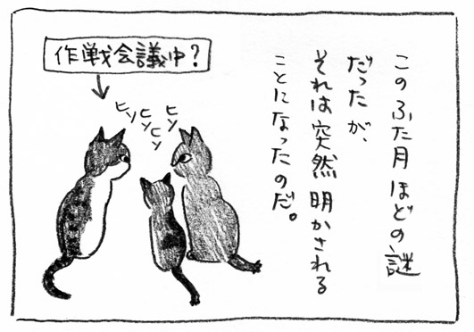 6_作戦会議中