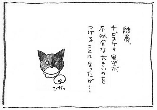 8_不似合い