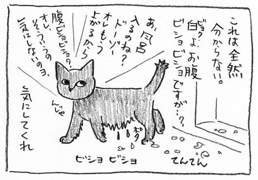 4_てんてん