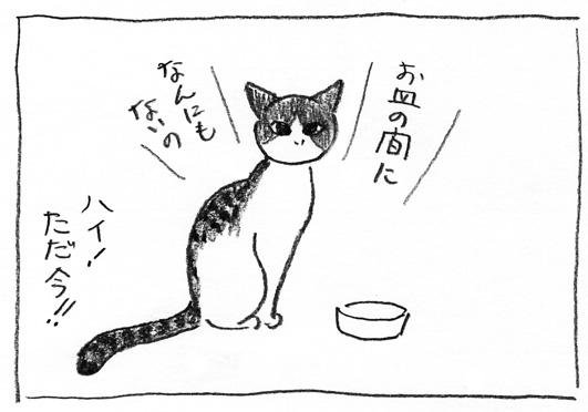 8_お皿の間に