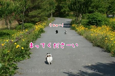 130608_02.jpg