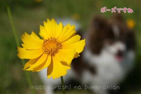 130608_03b.jpg