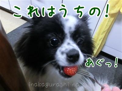150528_07.jpg