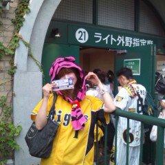 甲子園DENA
