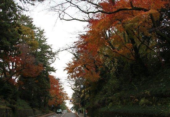 20131125kanazawa.jpg