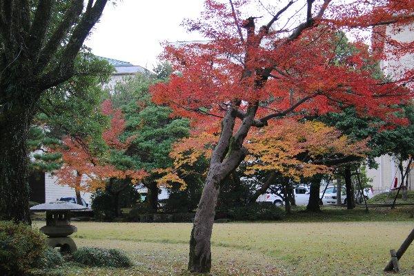 20131125kanazawa3.jpg