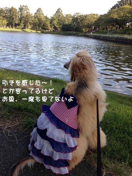 IMG_3112.jpg