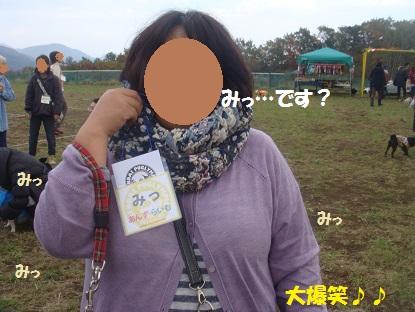 DSC05061_201312010449379a1.jpg