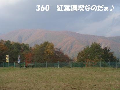 DSC05156_20131201035330bf8.jpg