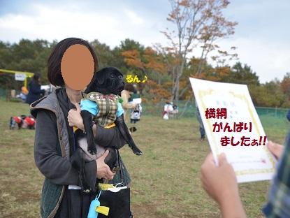 MK6_1721_original.jpg