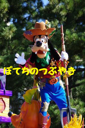 20131031 グーさん