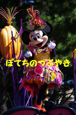 20131031 ミニー1