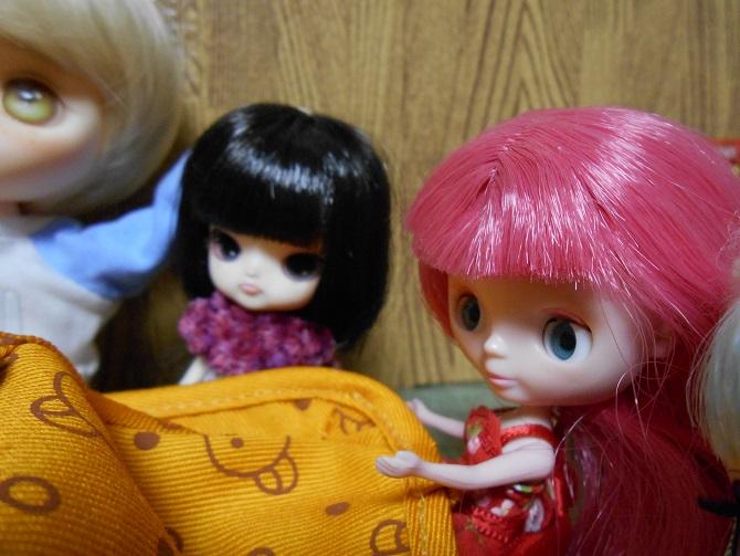 4 スーちゃんはちーの最初の友達