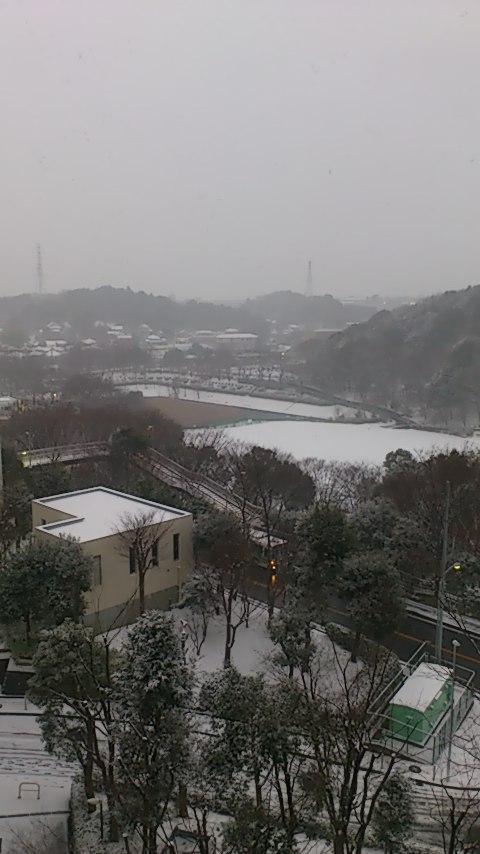 雪化粧20140208