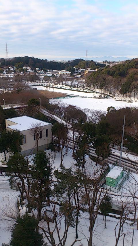 雪化粧20140209