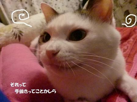 CIMG7893 - コピー (2)