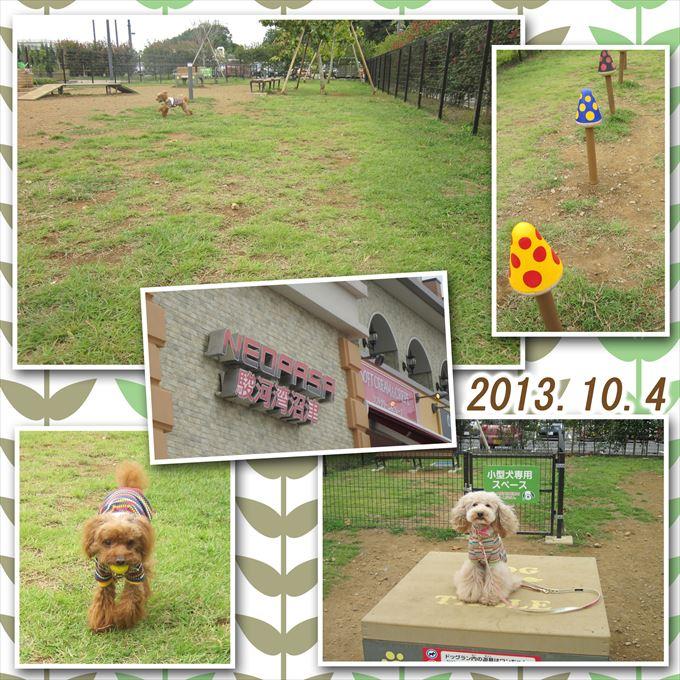 12_201311022155327a3.jpg