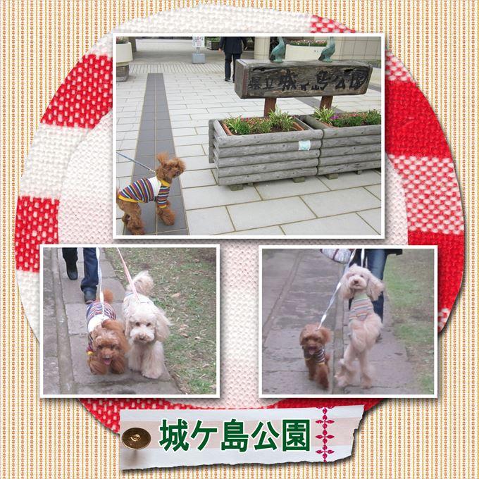 20_20131103165419bab.jpg