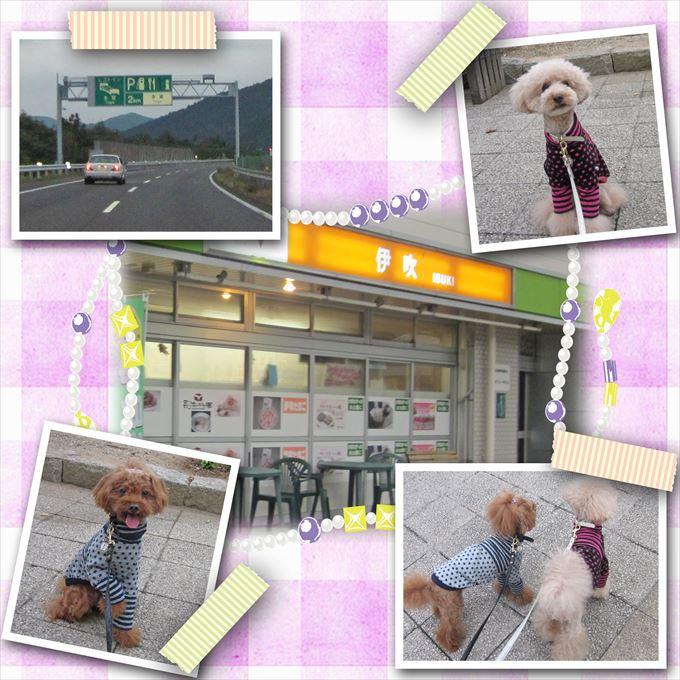 2_201411132218343fa.jpg