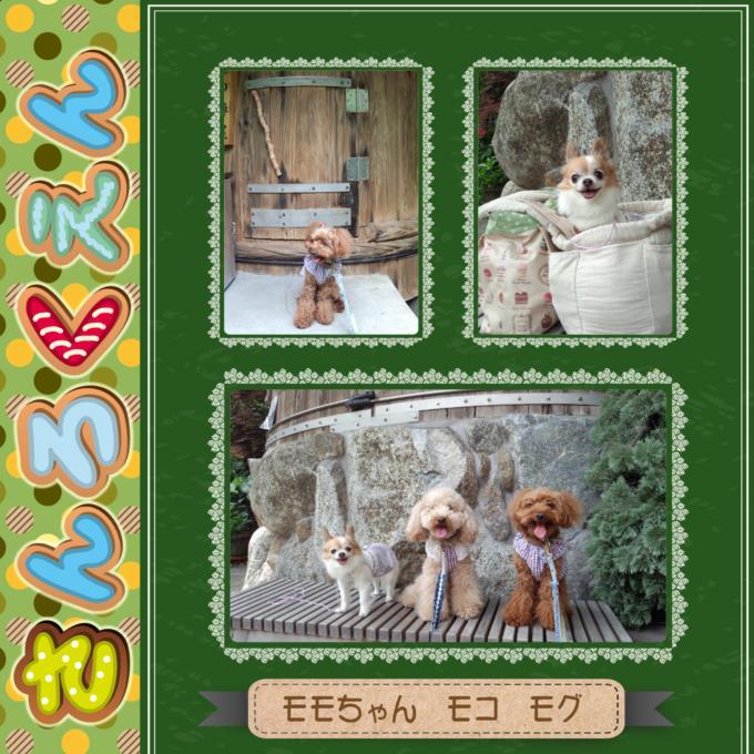 49-3_201308012226250e4.jpg