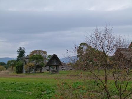 hiratuka1201.jpg