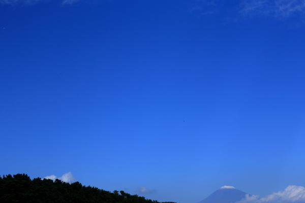 141103_三保松原2現像
