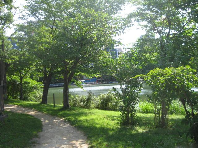 中島公園 2013・・・