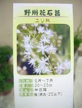 hanasekishou.jpg