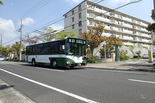 P4270101.jpg