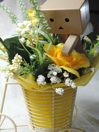 hanatodanbo3.jpg