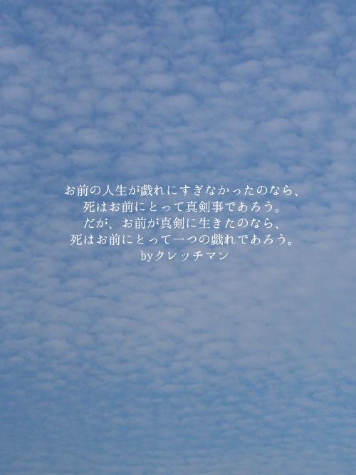 B8283405.jpg