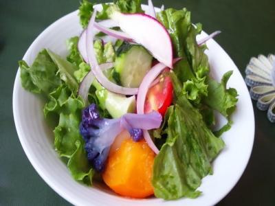 salad+girasore_convert_20130730122350.jpg