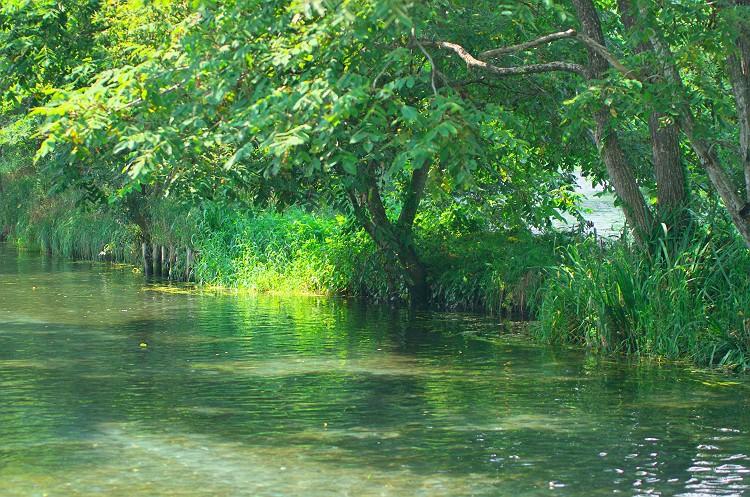 豊かな水の恵み 2