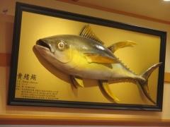 回転寿司 てっかまる 関西国際空港店-10