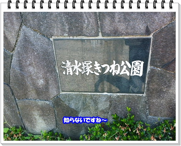 1554ブログNo6