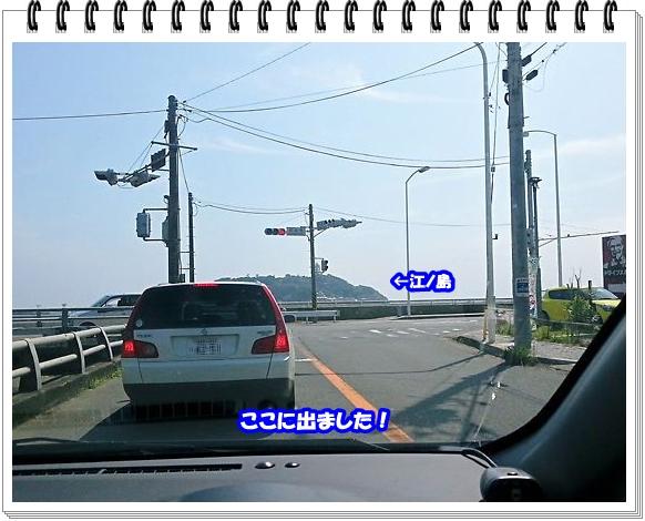 1554ブログNo11