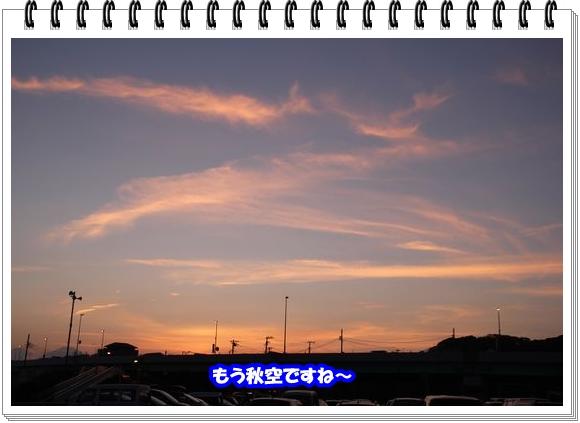 1620ブログNo11