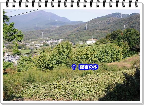1689ブログNo1