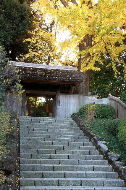 戸定邸の門