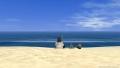 ハワイの海2