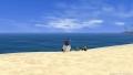 いつの日かの海