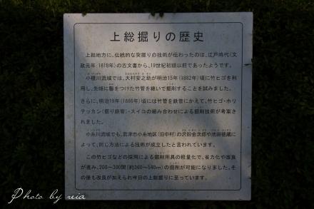 IMG_5063.jpg